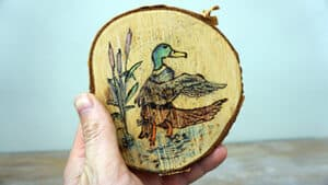 Pyrography on a Birch Disc [No Music]